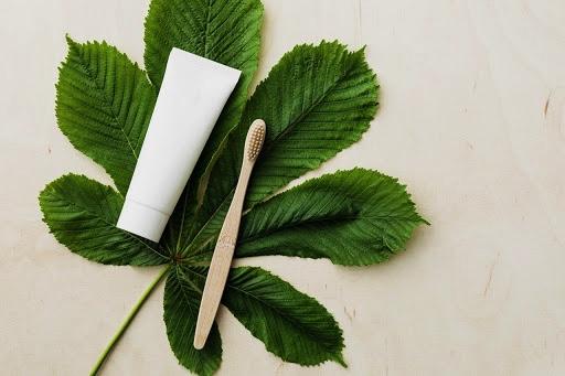 Tandenborstel en tandpasta op blad - negatieve patronen doorbreken met familieopstellingen en voedingsopstellingen coaching door Greetje De Reys